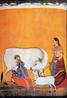 Кришна доит корову, Радха держит теленка. Школа Басоли, около 1750-1755 гг.