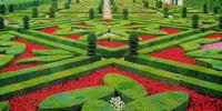 Регулярный сад замка Вилландри (Франция)